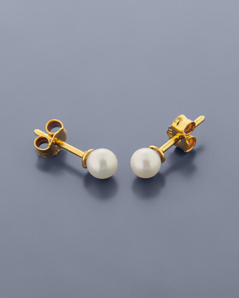 Σκουλαρίκια χρυσά Κ14 με Μαργαριτάρια   γυναικα σκουλαρίκια σκουλαρίκια χρυσά