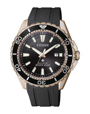 Ρολόι CITIZEN Promaster BN0193-17E